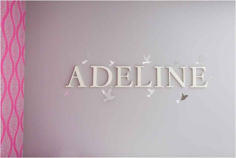 Adeline Lifestyle Newborn Session Nursery Tour by Tifani Lyn Photography_0002